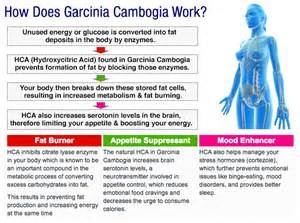 garcinia cambogia fruit extract weight loss picture 3